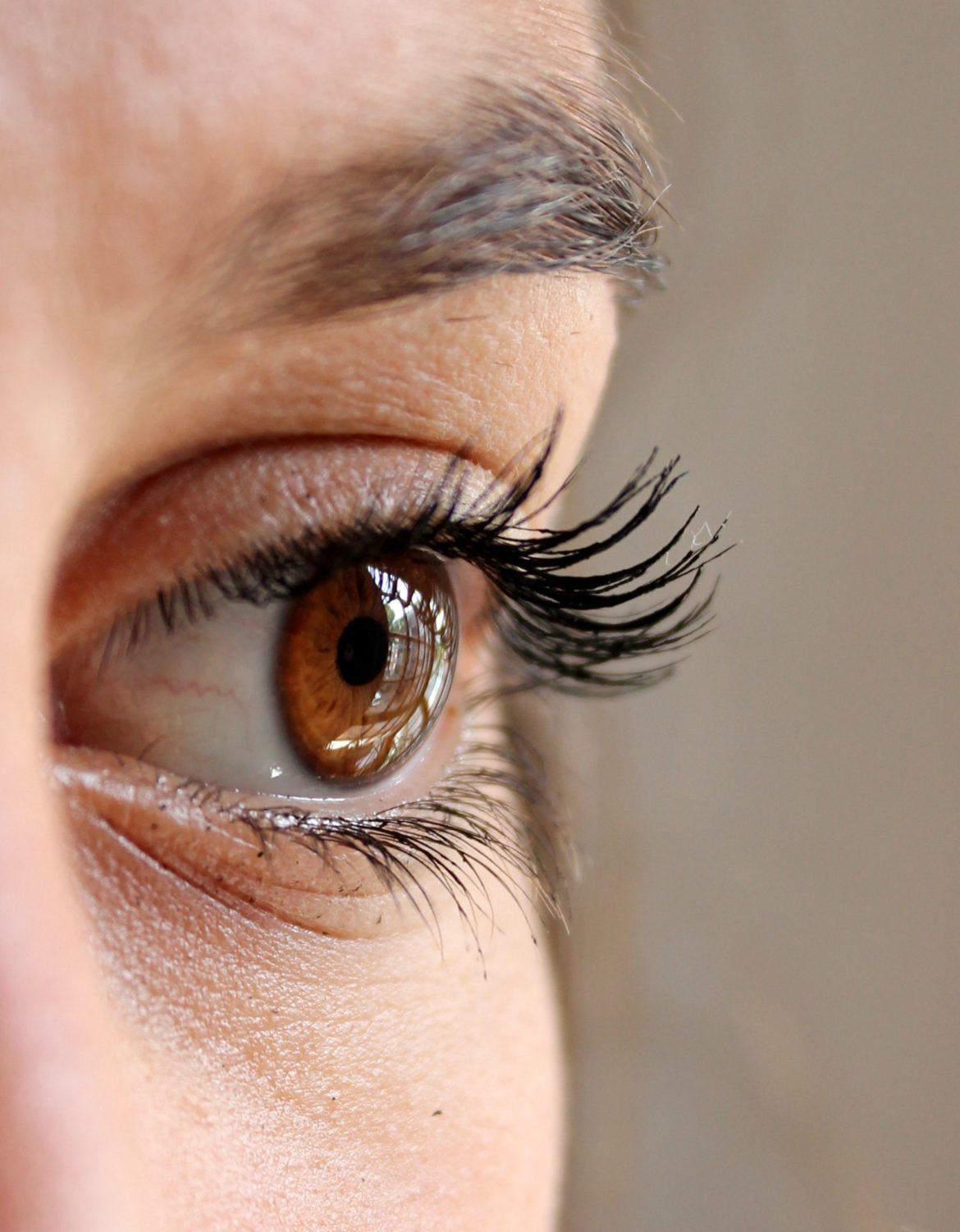 Aide pour vos sourcils disparus